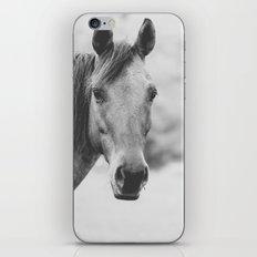 Wild Heart, No. 4 iPhone & iPod Skin