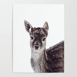 LITTLE FAWN FIONA Poster