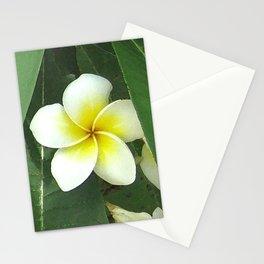 Plumeria Extreme Stationery Cards