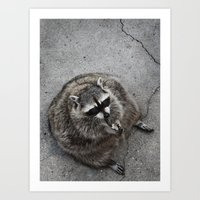 rocket raccoon Art Prints featuring Raccoon by Margarita Dunwich
