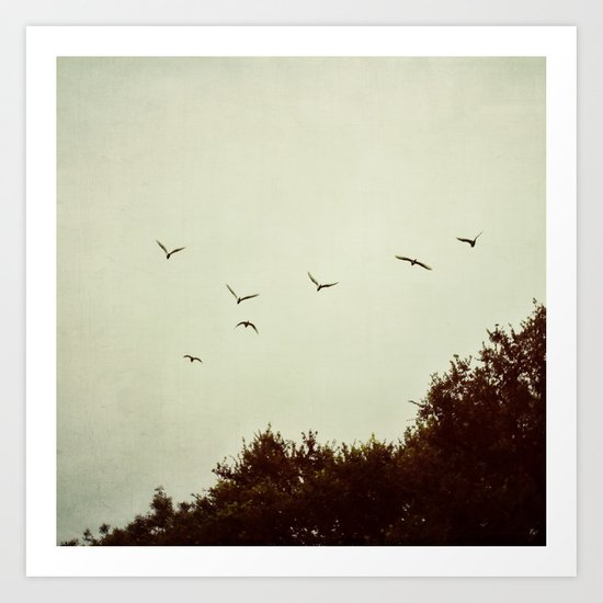 just above the tree tops Art Print