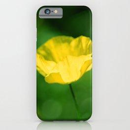 Meconopsis cambrica iPhone Case