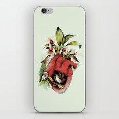 Heart Of Birds iPhone & iPod Skin