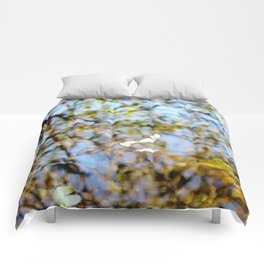Reflection on Water Comforters
