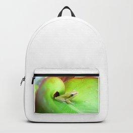 Baby Frog Backpack