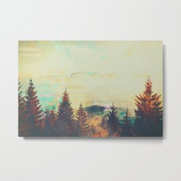 Telarose Valley Metal Print
