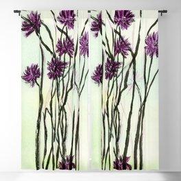 Invasive Knapweed Blackout Curtain