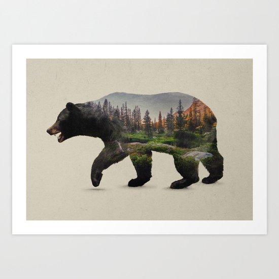 The North American Black Bear Art Print By Davies Babies