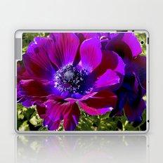 Burgundy Poppy Anemone I Laptop & iPad Skin