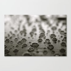 Droplets 2 Canvas Print