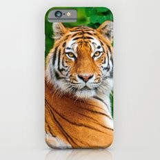 Asian Tiger iPhone 6 Slim Case