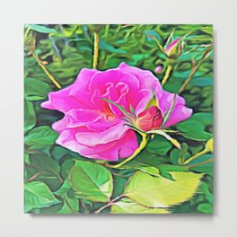 Pink Flower of Graceful Beauty Metal Print