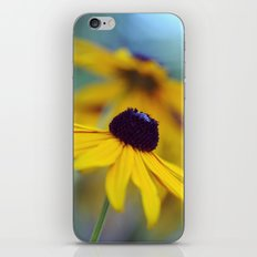 Summer Radiance iPhone & iPod Skin