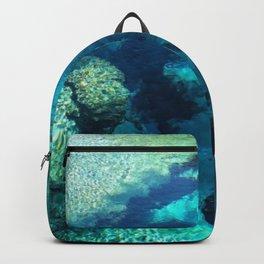 Blue Springs Backpack