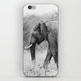 Elephant Tracks iPhone Skin