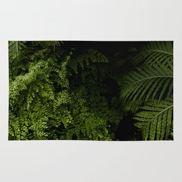 Tropical jungle. Rug