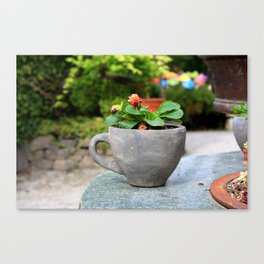 Don't Drink Me Canvas Print
