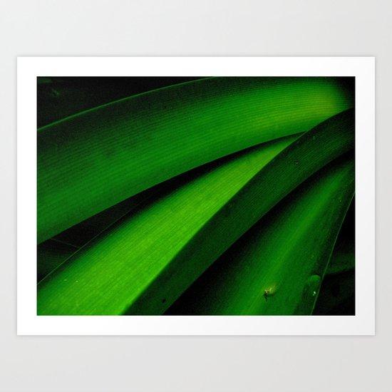 Greener than Green Art Print