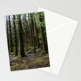 Woods in Killarney National Park Stationery Cards