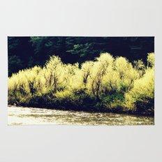 Sun-Kissed Muddy Water Rug