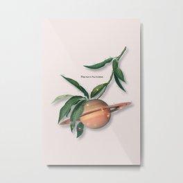 Saturn Fruit Metal Print