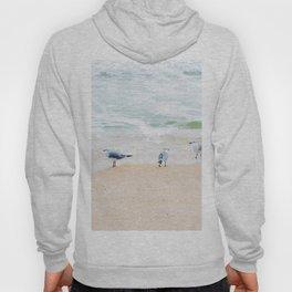 Beach Birds Hoody