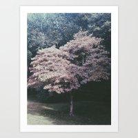 Cherry Fall Art Print
