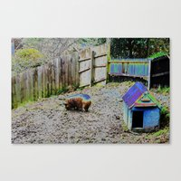 pigs Canvas Prints featuring Pigs by Vanitylife