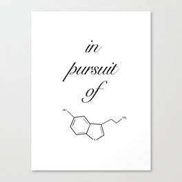 in pursuit of happiness Canvas Print