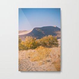 Autumn Sand Dune Metal Print