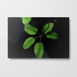 Black on green Metal Print