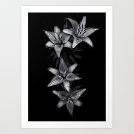 Backyard Flowers In Black And White 7 Art Print