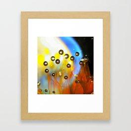 Leebo's Thunderdome Mib Entry Framed Art Print