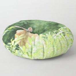 Peek A Boo Doe Floor Pillow