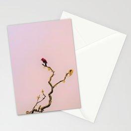 Lone 'Apapane Stationery Cards
