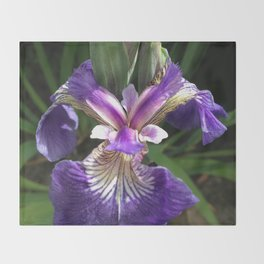 Alaska Wild Iris by Mandy Ramsey, Haines, Alaska Throw Blanket