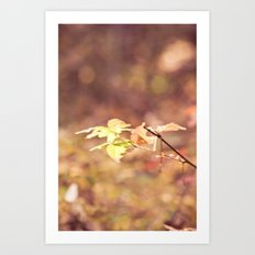 Autumn Child Art Print