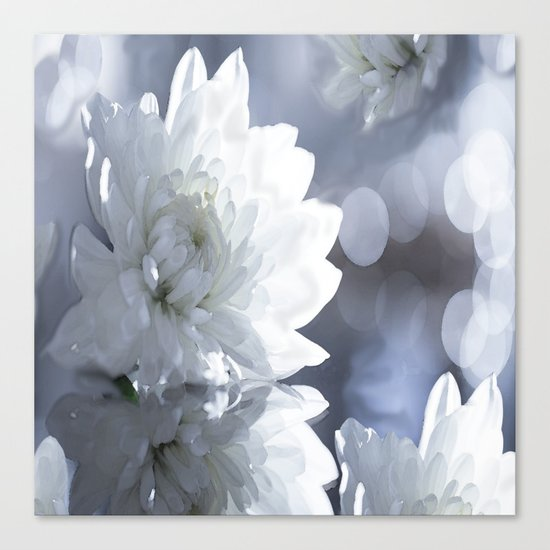 White flower with bokeh on a grey background included wonderful light Canvas Print