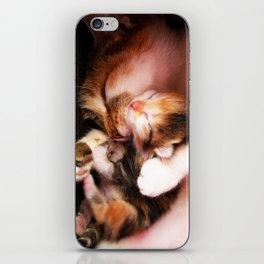 Cats hug iPhone Skin