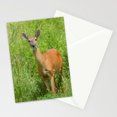 Deer on Edge of Field Stationery Cards