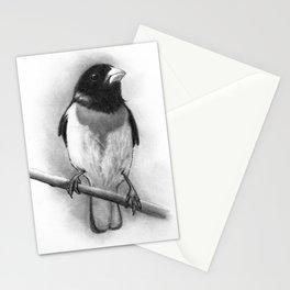 Bird: Grosbeak: Pencil Drawing Stationery Cards