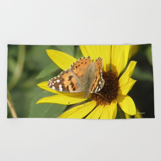 Painted Lady Butterfly Picks Pollen Beach Towel