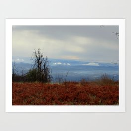 Red and Blue Mountaintop Art Print