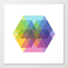 Fig. 040 Hexagon Shapes Canvas Print