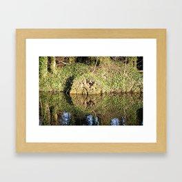 Reflection and circle Framed Art Print