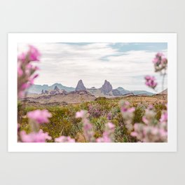 Desert Daydreams Art Print