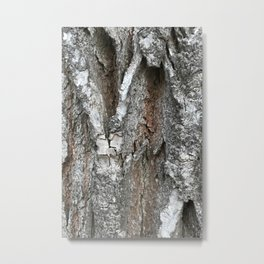 bark at lakeside park Metal Print