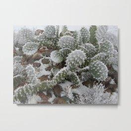 Prickly Pear in Snow Metal Print