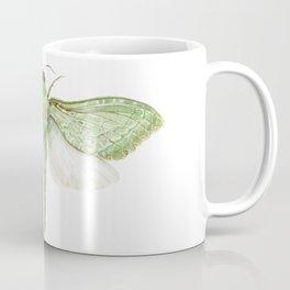 Pepe Tuna / Puriri Moth 2016 Coffee Mug