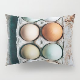 Farm Eggs Pillow Sham